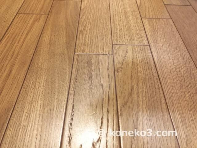掃除機をかけた後の床