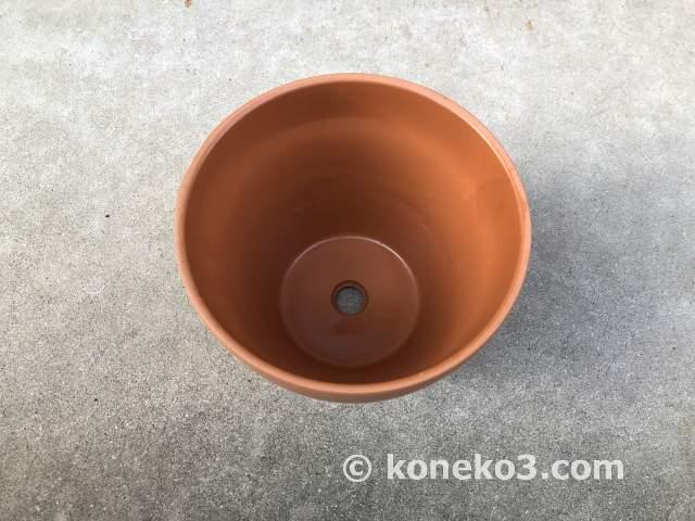 ダイソーの素焼き鉢(6号)